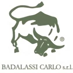 バダラッシカルロ社 ロゴ