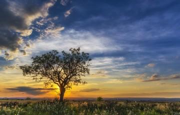 大自然は偉大だという事が分かる画像