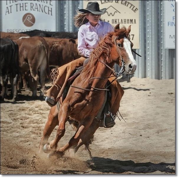 ブライドルレザーが開発されるキッカケになった激しい乗馬