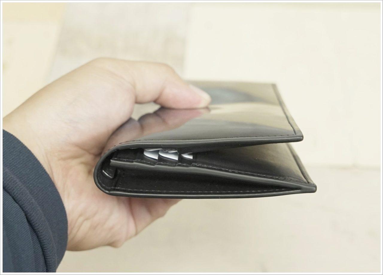アドバンレザー長財布にカードを入れて横から見た